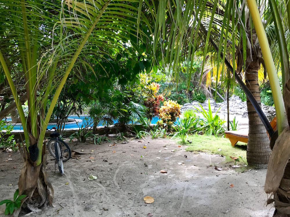 Ambegris Caye Belize yoga studio pool