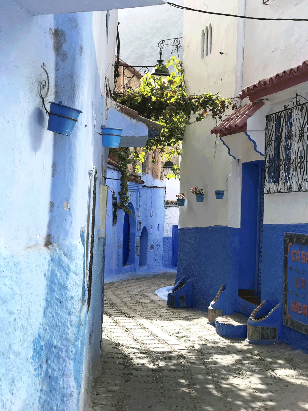 Chefchaouen-Morocco-image-blue-alley5.png